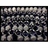 China Screwed End NPT / BSPT / BSPP Stainless Steel Y Pattern Strainer With Drain Plug wholesale