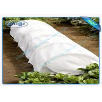 China Anti UV Polypropylene Non Woven Fabric for Weed Control Garden Mat wholesale