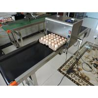 China Egg Industry Automatic Batch Code Printing Machine With Thermal Foam Type Nozzle wholesale