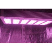 China 1.5g/watt 630W  LED Growing Light  with full spectrum For Plants Growth wholesale