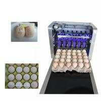 China Eggs Batch Code Food Inkjet Printer , Continuous Laser Marking Machine  wholesale