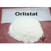 China Fat Reduce / Weight Loss Steroids Orlistat Powder CAS 96829-58-2 With GMP Standard wholesale