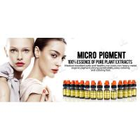 China CE Semi Permanent Makeup Pigments Micro Pigment Ink For Permanent Makeup Tattoo wholesale