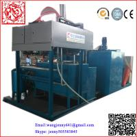 China paper pulp molding machinery making egg tray,egg box,egg dishes on sale