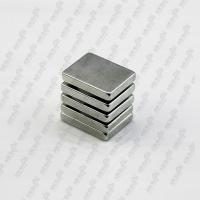 China Neodymium monopole magnet wholesale