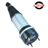 China C2C41343 C2C41341 Rear Shock Absorber wholesale