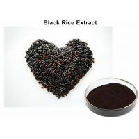 China Healthy Anti - Aging Black Rice Extract, Black Currant Extract Tonifying Kidney wholesale