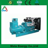 China 10KW biogas generator top quality for Industry use wholesale