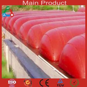 China 20m³ economic big biogas plant wholesale