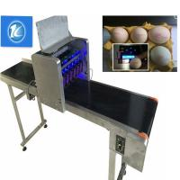 China Free Upgrade Egg Jet Batch Coding Machine Can Print All The Words And Fonts wholesale