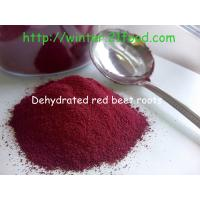 China dehdyrated red beet root powders 100 mesh wholesale