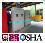 China Medical Compressed Gas Cylinder Storage Cabinet , Drum Safety Storage Cabinets wholesale