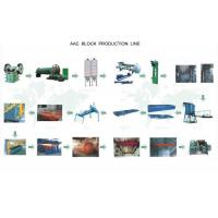 China AAC Autoclaved Aerated Concrete Block Machine For Tailing Sand Block wholesale