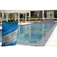 China Swimming Pool Waterproofing Slurry With Concrete Polymer Safety wholesale