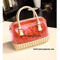 China New Fashion Transparent + Leopard Silicone Handbag with 5 Different Color wholesale
