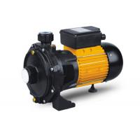 China Cast Iron Electric Motor Water Pump , Horizontal Multistage Centrifugal Pump For Domestic wholesale