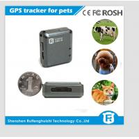 China IOS/Android APP worlds smallest pet gps tracker personal cheap gps pet tracker wholesale