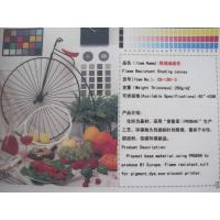 Quality Eco Solvent Canvas Inkjet Printing Media For Home / Hotel Decorations for sale