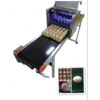 China Intelligent Automatic Inkjet Marking Machine For 30 Holes Entire Pallet Eggs wholesale