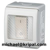 China IP55 waterproof switch (double pole) from China supplier on sale
