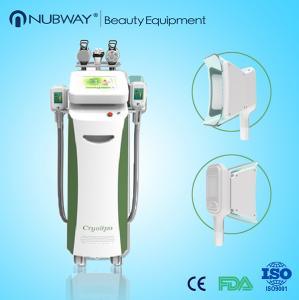 China 2015 Newest Technology Fat Freezing high intensity Cryolipolysis loss weight Machine wholesale