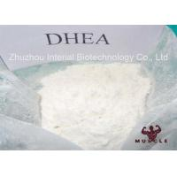 China Pharm Grade Homebrew Steroids Pure DHEA Powder For Gain Strength CAS 481-29-8 wholesale