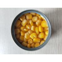 China Home Delicious Yellow Sweet Corn Kernels 567G / 2500G / 2840G / 3KG on sale