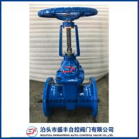 China Rising Stem ductile iron Gate Valve made in China on sale