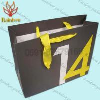 China Customized Shopping Paper Bags For Cosmetics With Twisted Handle wholesale
