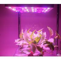 Quality 415W LED Grow Lights Full Spectrum Growing From Vegetate To Bloom , Grow Rooms / for sale