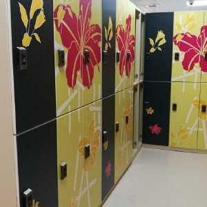 China Gym E - Lock Shoe Storage Locker Colour Printing For SPA Senior Senior Clubs wholesale