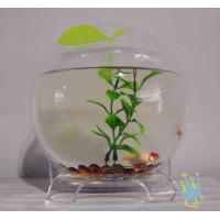 China Plastic modern acrylic fish tank wholesale