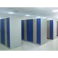 China Single Tier Lockers PVC Material , Gray Cabinet Commercial Gym Lockers wholesale