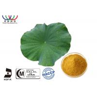 Quality Dried Lotus Leaf Weight Loss , Chinese Quality Herbal Extracts Fat - Burner Flavonoids for sale