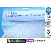 China 55-06-1 T3 Liothyronine Supplement  Powder , Oral Anabolic Steroid For Body Shape wholesale
