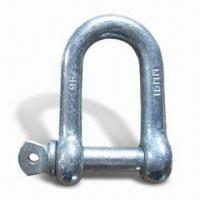 China Large D-shackle, Made of High Tensile Steel, with Hot Galvanized Surface Finish on sale