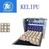 China Clear Egg Inkjet Coding Printer With Unique Spray Hole Alignment Function wholesale