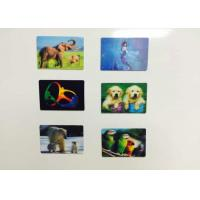 China UV Offest CMYK Printing PP Lenticular 3D Fridge Magnets With FAMA Certification wholesale