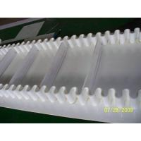 China Sidewall conveyor belt for food industry from China factory for free samples wholesale