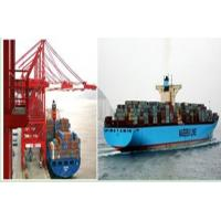 RELIABLE PROFESSIONAL SEA SHIPPING SERVICE IN QINGDAO CHINA TO WORLDWIDE