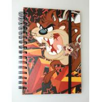 China OK3D factory wholesale A4/A5/A6 lenticular flip cover 3d notebook with spiral wire lenticular cover notebook wholesale