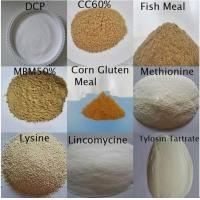 China Good quality 7757-93-9 Pure white DCP Di Calcium Phosphate 18% fish feed additives wholesale