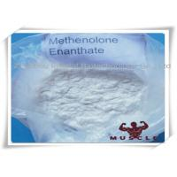 China 99% Purity Methenolone Enanthate/Primobolan Depot Muscle Building Steroids CAS 303-42-4 wholesale