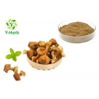 China Brazil Mushroom Extract Powder Agaricus Blazei Murrill Extract Polysaccharides Powder wholesale