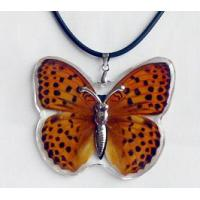China Women Pendant--Real Butterfly Jewelry wholesale