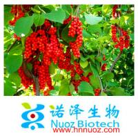 China Nuoz supply Fructus Schisandra Chinensis P.E. in Brown yellow /Schisandra Chinensis Extracts Schisandrol A 5% HPLC on sale