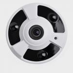 China H.265 3.0MP Starlight 2.1mm Infrared Fisheye IP Camera fisheye surveillance camera wholesale