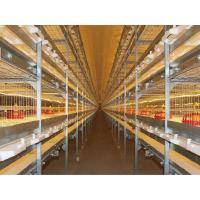 China Broiler Cage wholesale