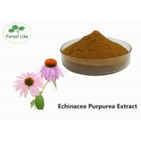 China Echinacea Extract Powder 2% Cichoric Acid wholesale