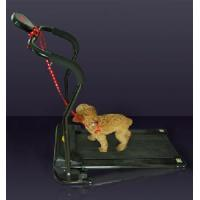 China Auto Pet Treadmill wholesale